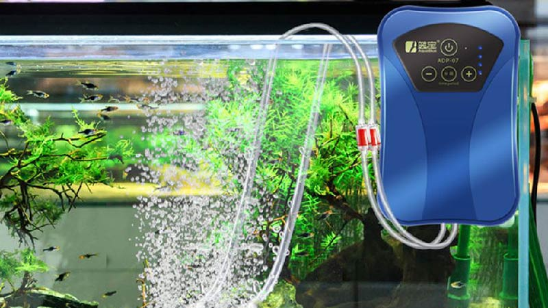 best-aquarium-air-pump