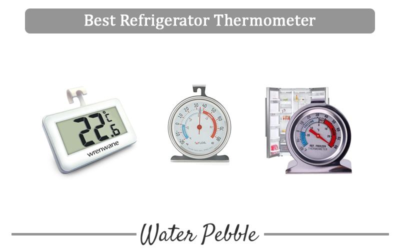 Best Refrigerator Thermometer